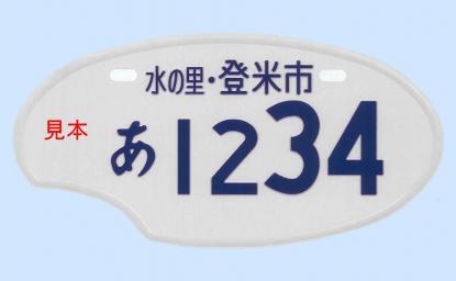 plate_2011033020033034.jpg
